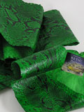 Free Shipping on Implora Green Python Snakeskin