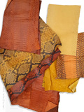Snake Skin Scraps Pieces Assorted Yellow Orange
