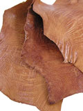 Tan Ostrich Knee Scraps 10H (3 pcs) 