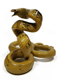Free Shipping on Copperhead Racer Snake Watching Style Taxidermy Mount