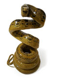 Copperhead Racer Snake Coiled Taxidermy Mount  